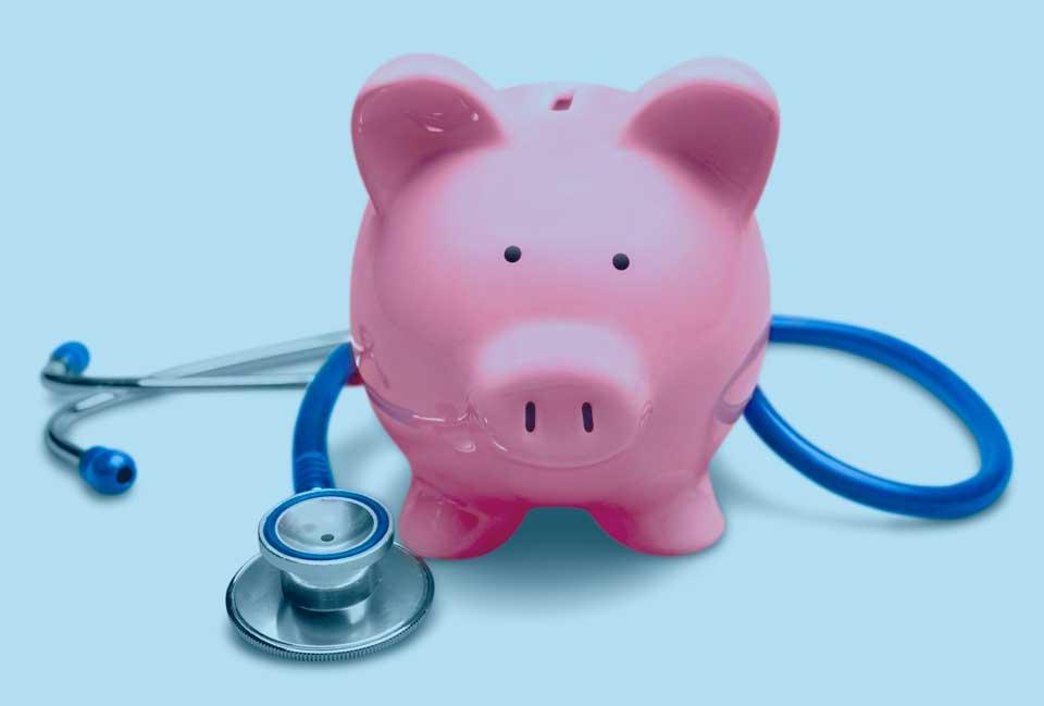 hucha cerdo médico